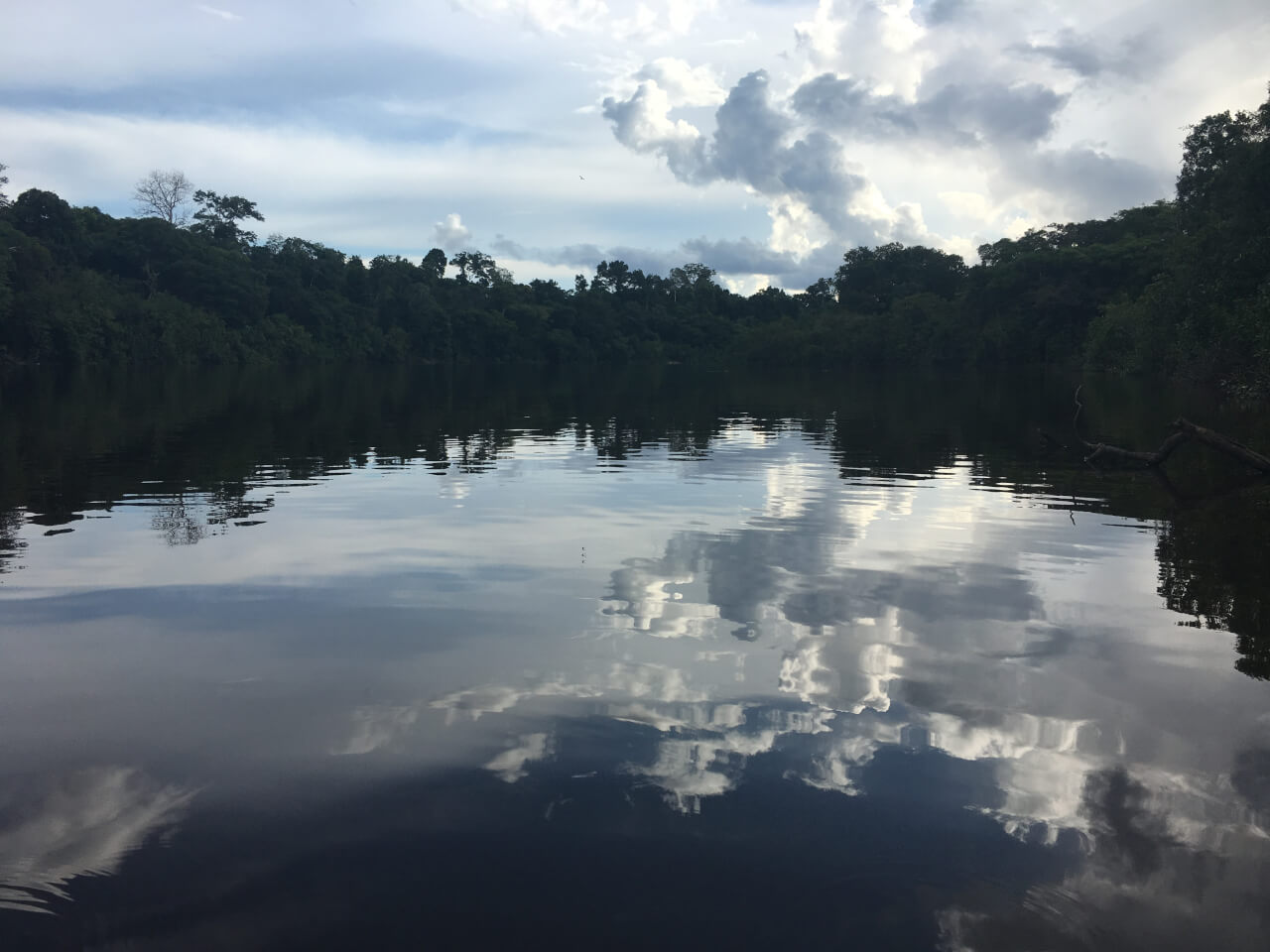 A Week in the Peruvian Amazon: Part 1