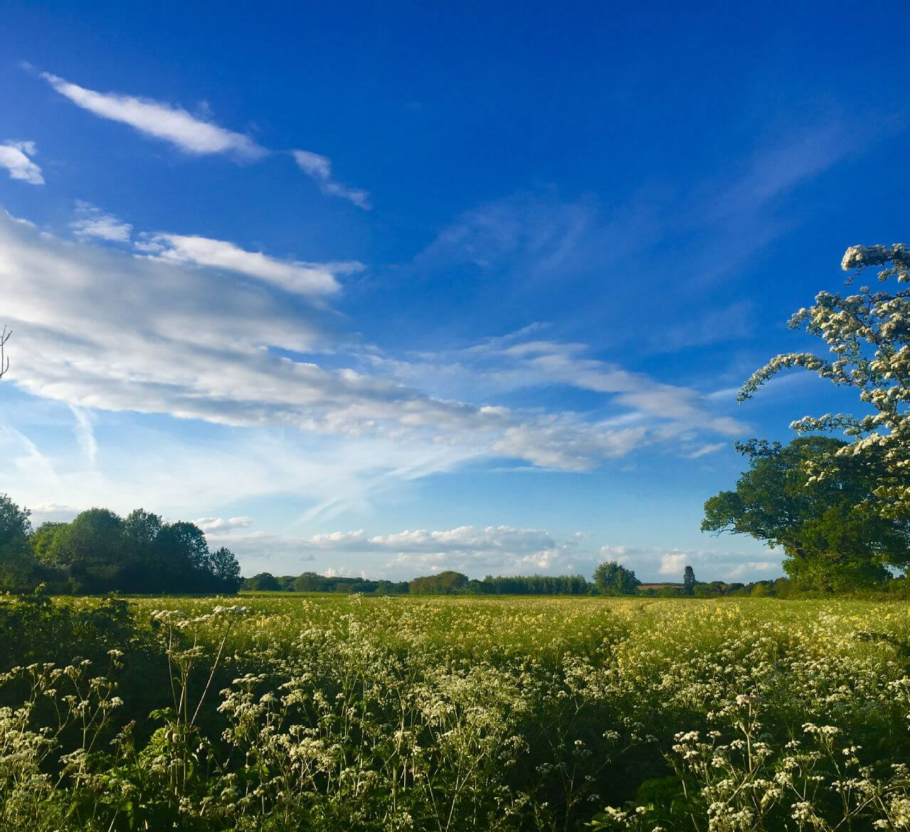 Leam is worth exploring- this was taken in Newbold Comyn