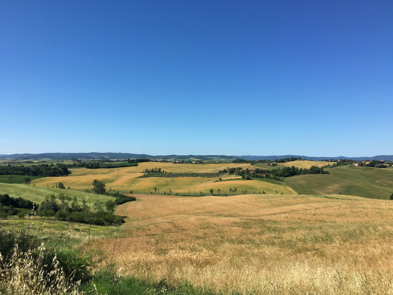 Getting lost in Tuscan fields, Italian exams, and endless goodbyes