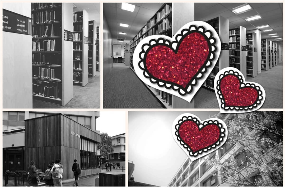 Love Letter to the Library