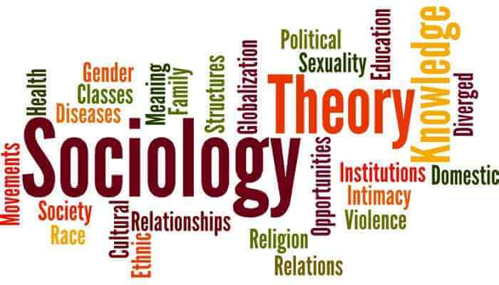 Is Sociology A Useless Degree?