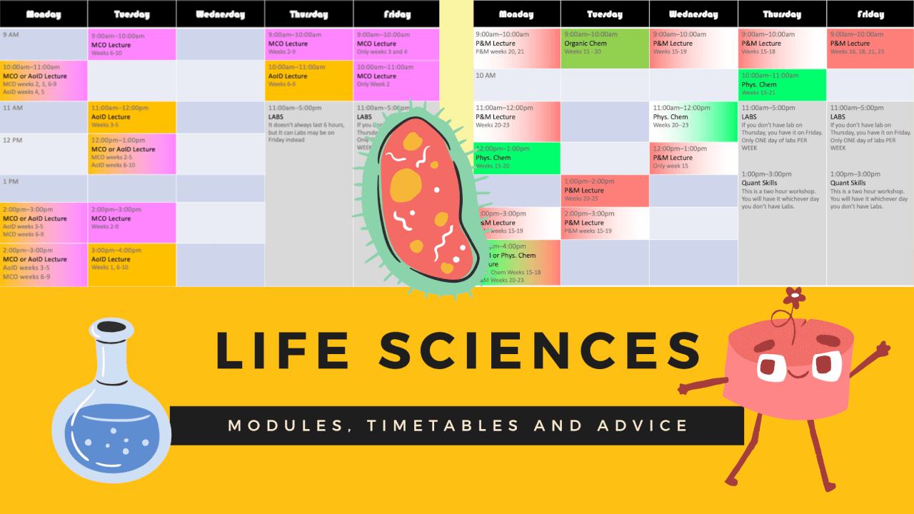 Life Sciences – Modules, Timetables and Advice from students.