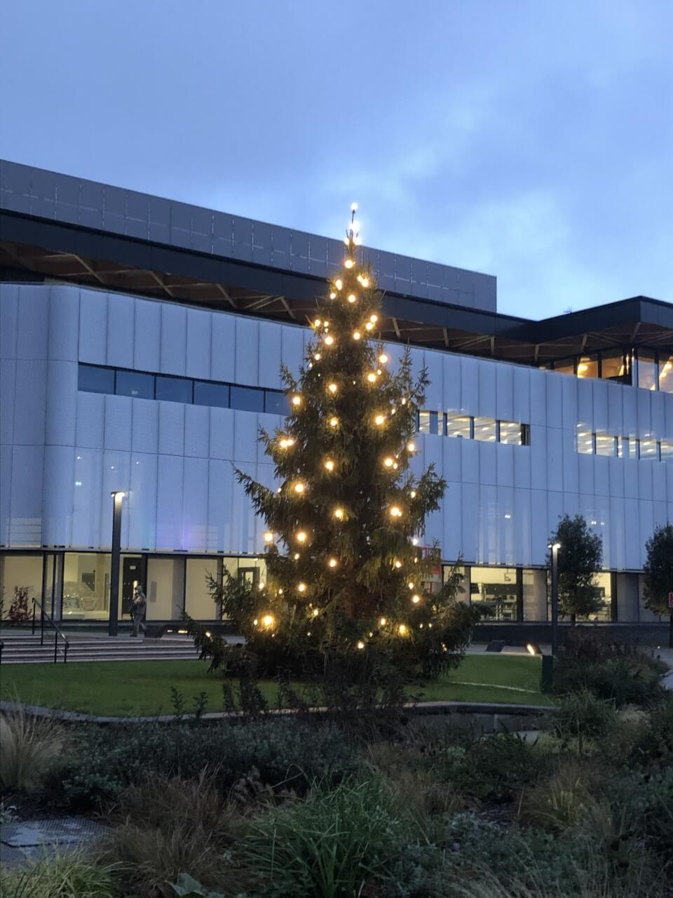 Covid tests, Christmas trees, and my last ever term 1 at Warwick