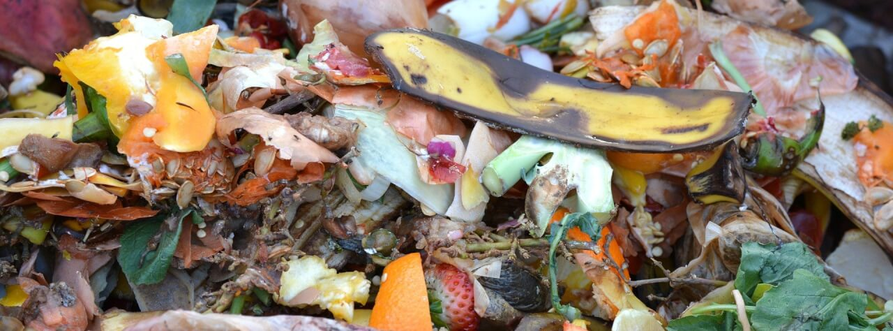 Waste not want not: simple tricks to reduce your food waste