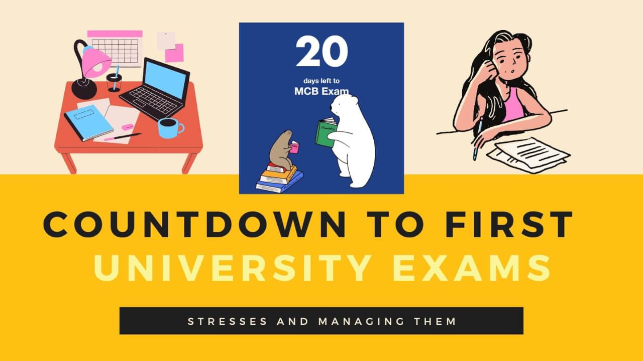 The Countdown to my first University Exams